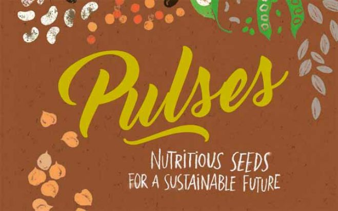 LIBRI. Pulses: nutrition seeds for a sustainable future: legumi, semi nutrienti per un futuro sostenibile